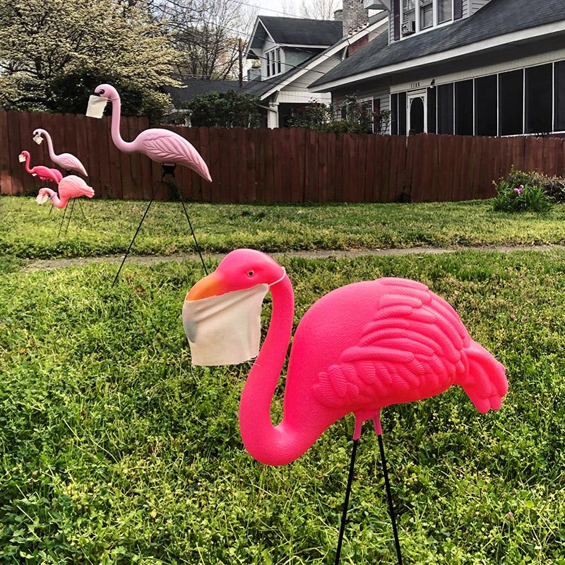 Plastic flamingos wear medical face masks during the Covid-19 corona virus outbreak. Glenwood neighborhood, Greensboro, NC.